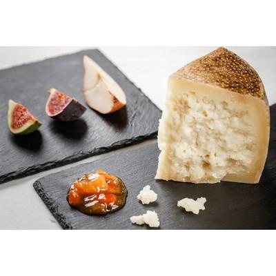 Pecorino cheese Nero di Grotta